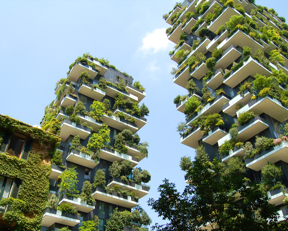 Bosco in verticale