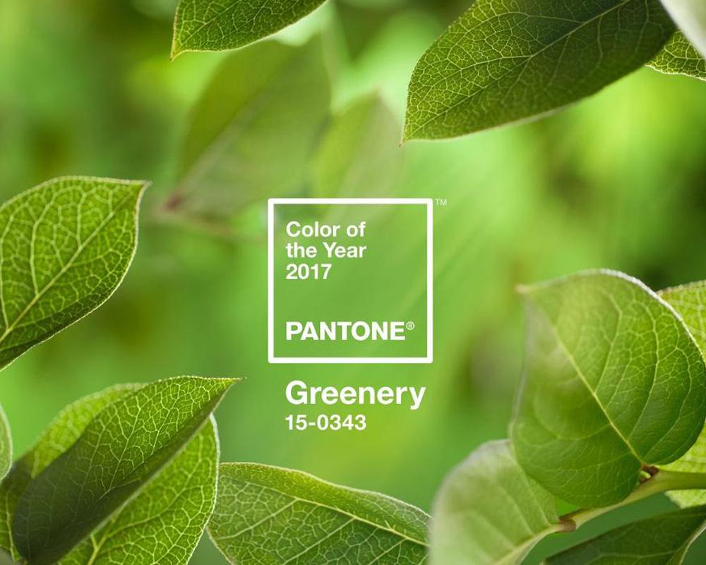 Pantone verde colore anno